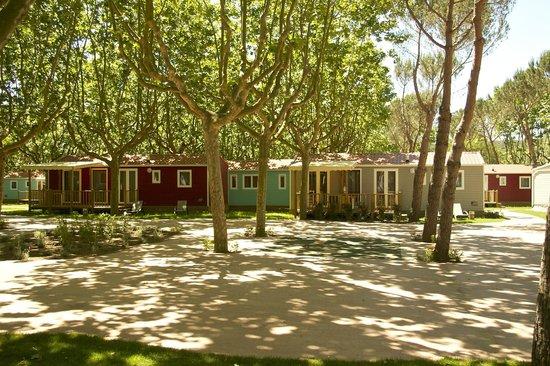 Yelloh! Village Mas Sant Josep: Cottage **** Palm Empordà