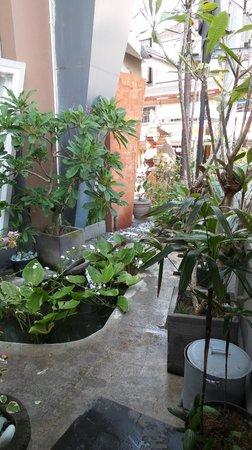 Hotel Neo Kuta Jelantik : Small garden leading to Pool side..