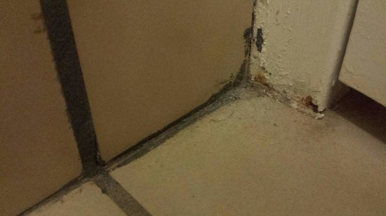 Quality Inn Morehead City: Corners very dirty. Hair and dust from previous occupants.