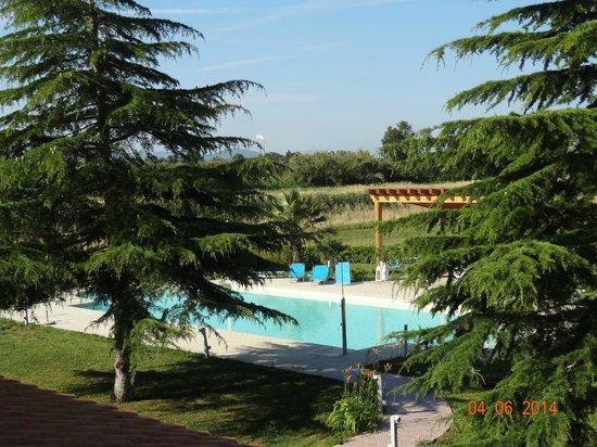 La Siegia : piscina tra il verde