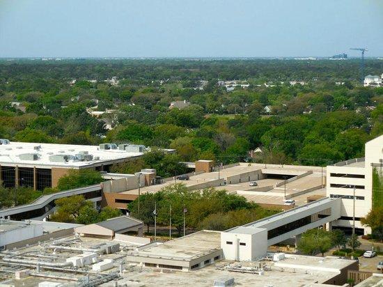 The Westin Houston Memorial City: Houston is surprisingly green
