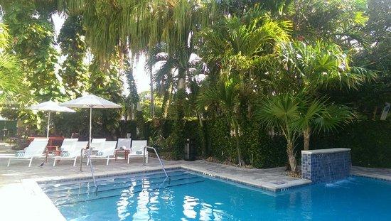 Almond Tree Inn: Pool