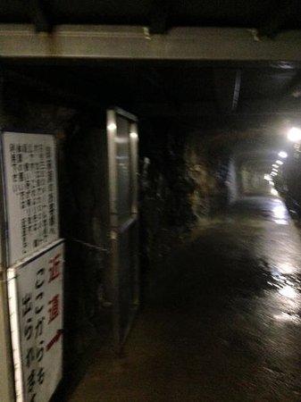 Ikurado: 途中で出口へ進める通路があります