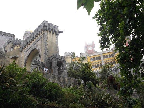 Park and National Palace of Pena: la entrada