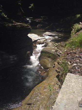 Watkins Glen State Park: Gorge trail