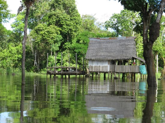 Treehouse Lodge: Indian House along the Amazon