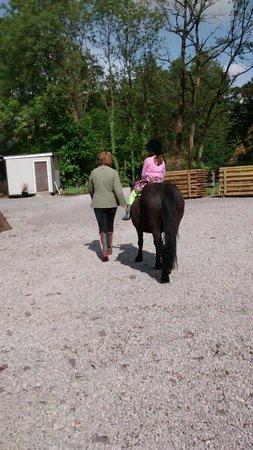 Blessingbourne Apartments: Blessingbourne Horse Riding