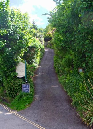 The Cormorant Hotel : Steep narrow drive – but worth it!