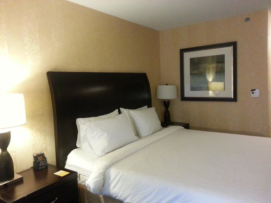Hilton Garden Inn Toronto Downtown: Room