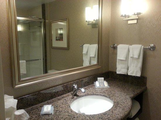 Hilton Garden Inn Toronto Downtown : bathroom