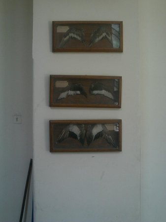 Agricultural Museum: .