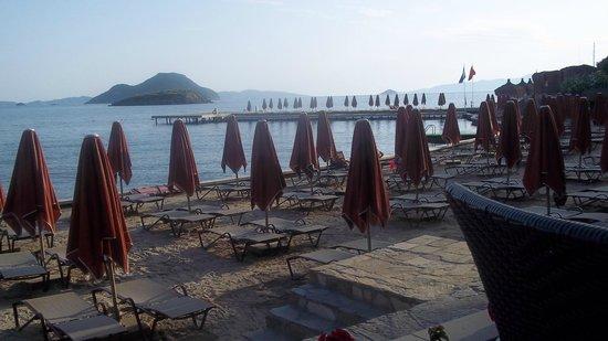 Kadikale Resort : Beach and pier