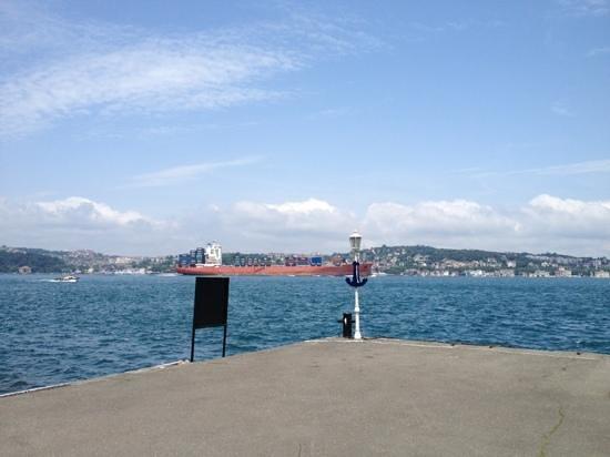 Bosphorus Strait: Container carrier passing through Bosphorus in Beykoz area