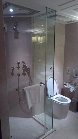 The Langham, Hong Kong: separate shower