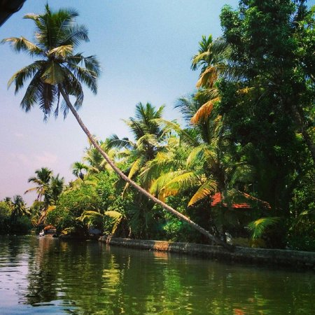 Kerala Backwaters: Leaning towards but still strong in the base..