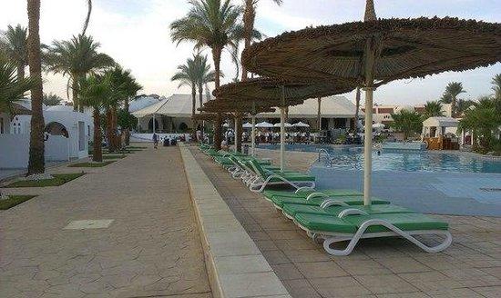 Sonesta Beach Resort & Casino : Дорога к рецепшену о тморя