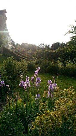 Manoir de la Vigneraie: Arrivée sous le soleil