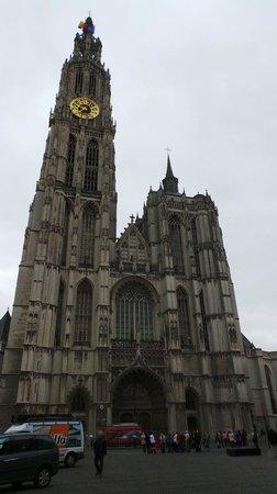 Catedral de Nuestra Señora (Onze Lieve Vrouwekathedraal): Собор