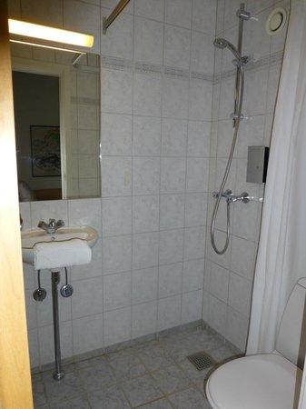 Best Western Hotel Hebron: Bathroom (Toilet & Shower)