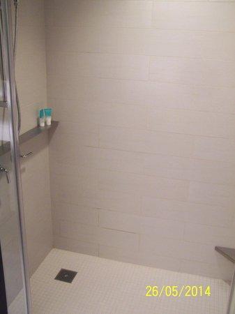 Hyatt Times Square New York: Shower