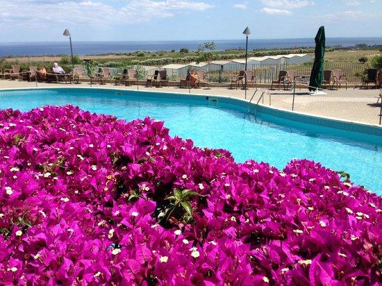 Agriturismo Serra San Biagio: vista piscina