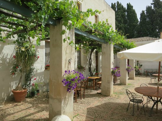 Azienda Fontanasalsa : Flowers are everywhere in the courtyard (here, under that 200 year old grapevine)