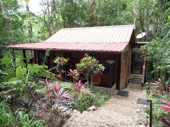 Table Rock Jungle Lodge : Rainforest Cabin