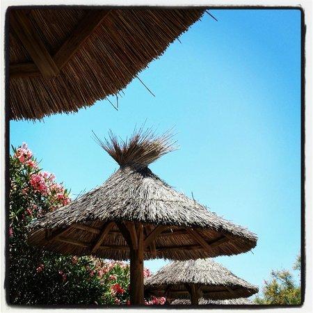 Le Mas de Cocagne: Zwembad