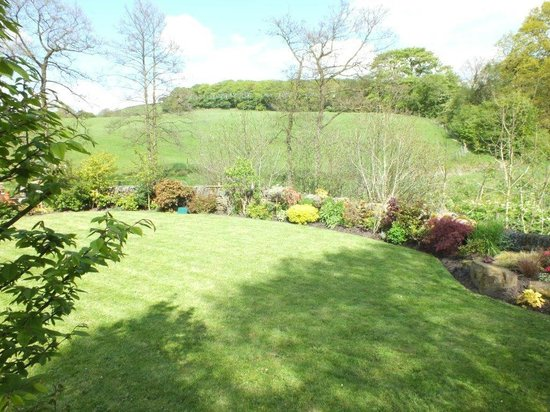 Ladygate Farm B and B: The Garden