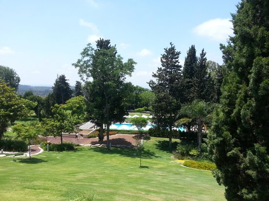 Carmel Forest Spa Resort by Isrotel Exclusive Collection: view from the room