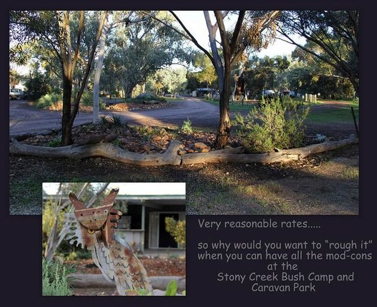 Stony Creek Bush Camp Caravan Park : around the park