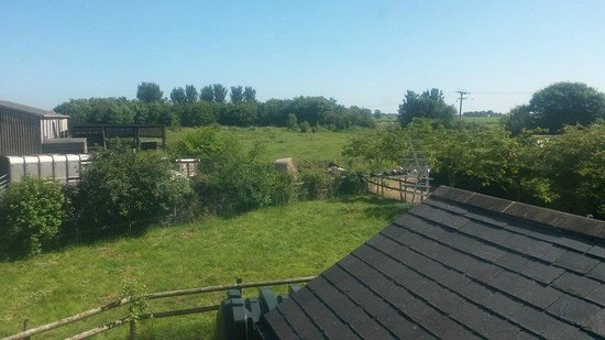The Beeches: View from window of upstairs room