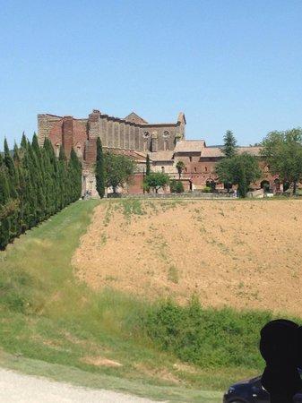 Agriturismo San Galgano: Vista dalla camera 9