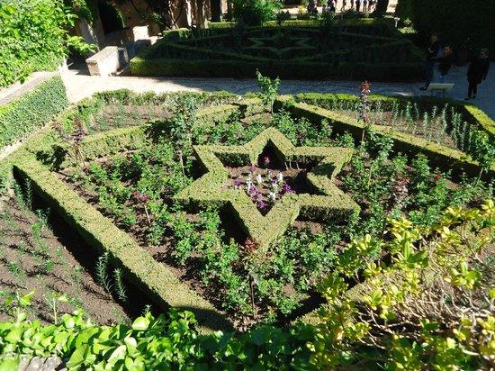 generalife preciosos jardines en primavera