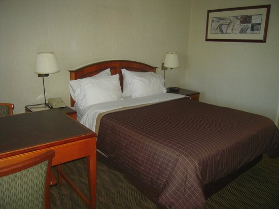 Vagabond Inn Costa Mesa/Orange County Airport : Chambre