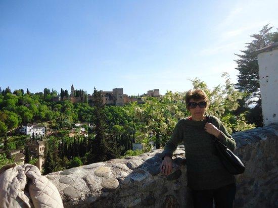 Carrera del Darro : Vista de la Alhambra al otro lado del ríio.