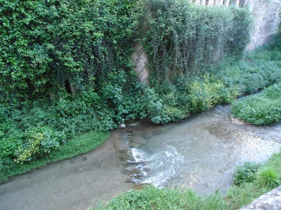 Carrera del Darro : Hermoso observar el atardecer desde el río.