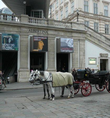 Historisches Zentrum von Wien: Vienna Albertina Museum
