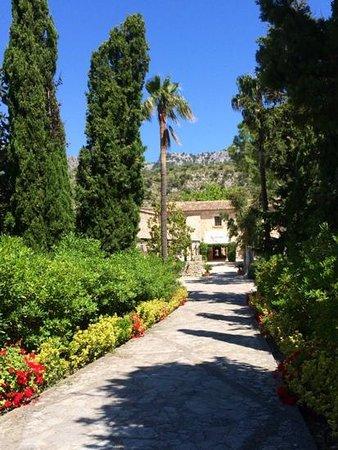 L'Hermitage: driveway
