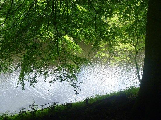 Derwent Dam: such a lovely sight