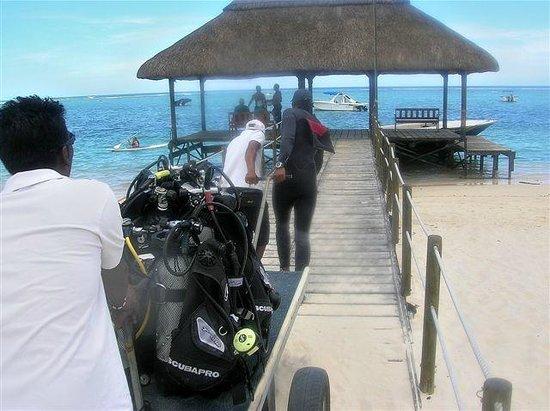 Sugar Beach Golf & Spa Resort: Diving