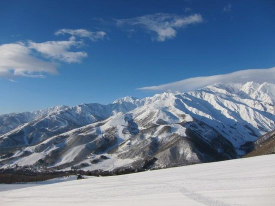 Hakuba Iwatake Ski Resort/Lily Farm & Mountain View: 隣の白馬八方尾根が見えます。