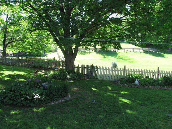 MeadowLark Farm Bed and Breakfast: The enclosed garden