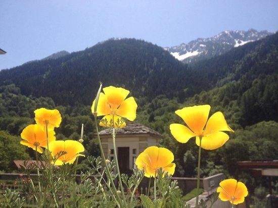 Bregaglia Valley