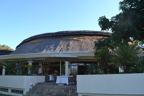 Ilala Lodge: Ilala grounds....