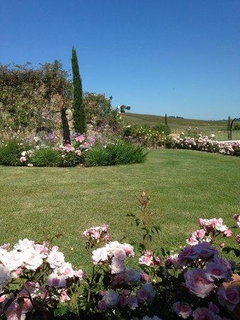 Relais Sant'Elena: Uitzicht vanaf terras suite 6