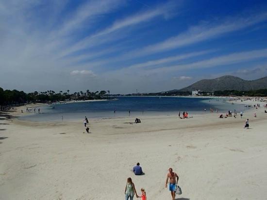 Viva Can Picafort: Alcudia beach
