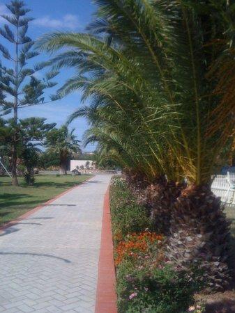 Asteras Resort: ΥΠΕΡΟΧΗ ΟΜΟΡΦΙΑ!!