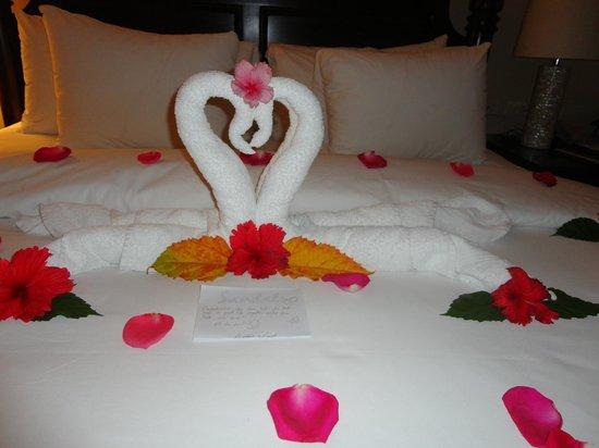Sandals Ochi Beach Resort: Lovely towel art & fresh petals - nightly!