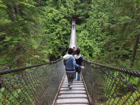 Lynn Canyon Suspension Bridge: Nice bridge!
